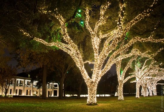Как в Америке украшают дома к Рождественским праздникам