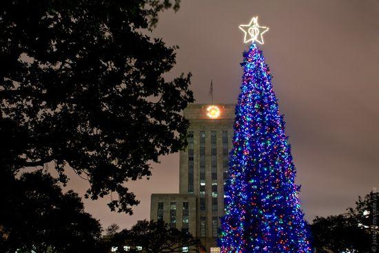 Городская елка в центре города
