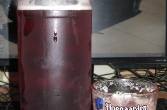 бельгийское вишневое пиво Морт Сюбите